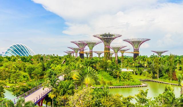 Kinh nghiệm du lịch Singapore - Malaysia tự túc 7 ngày giá 8 triệu