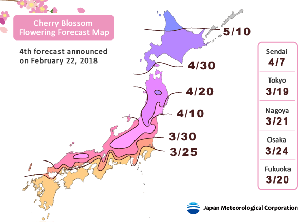 Dự báo mới nhất lần thứ 4 về lịch hoa anh đào nở tại Nhật Bản 2018