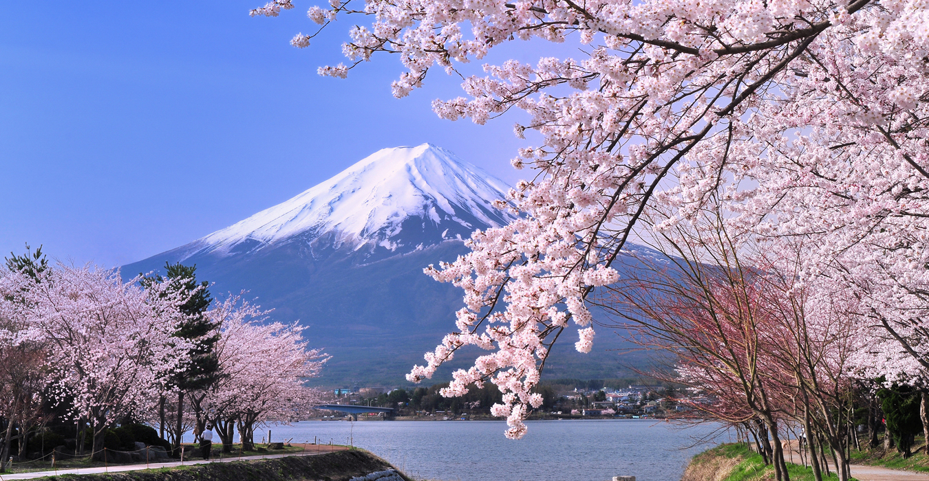 HÀ NỘI - FUJI - TOKYO - NIKKO - HÀ NỘI