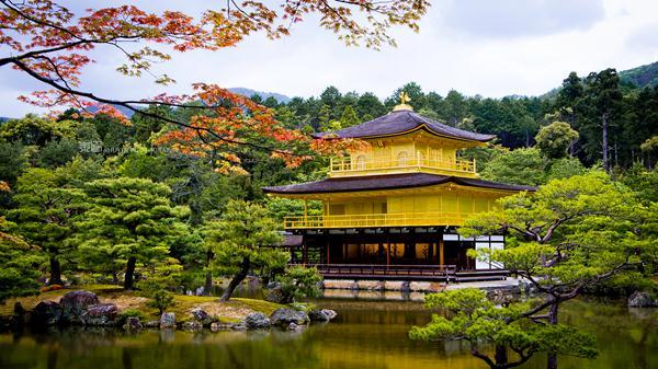 HÀ NỘI - OSAKA - CỐ ĐÔ KYOTO - TOYOHASHI - NÚI PHÚ SỸ - THỦ ĐÔ TOKYO - HÀ NỘI