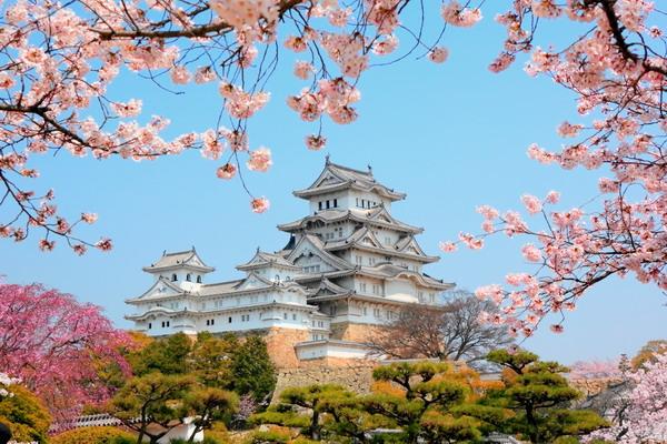 Hà Nội -Tokyo – Hakone – Núi Phú Sĩ – Kamakura - Hà Nội